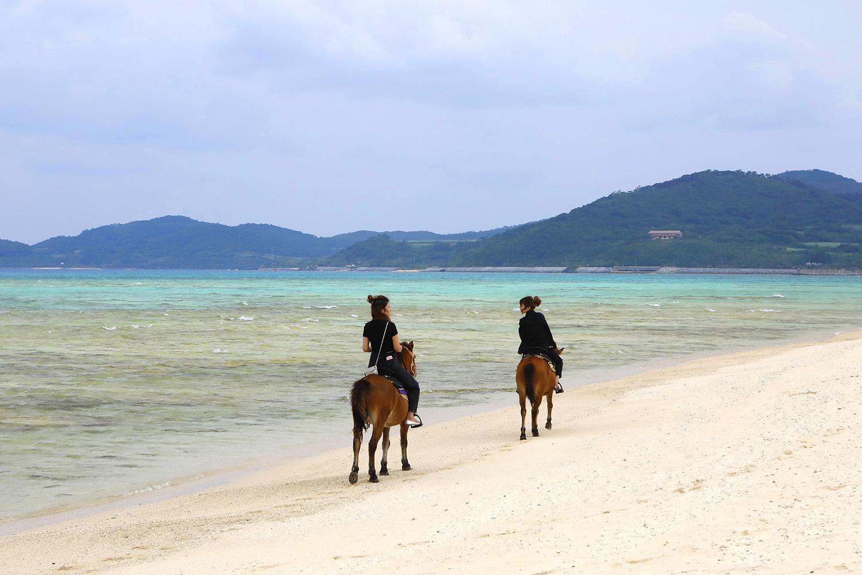 雄大な景色の中で、のんびり優雅に乗馬体験!